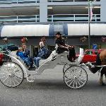 To your door service from Victoria Carriage Tours