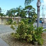 giardino/parcheggio