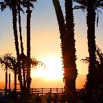 Sunset yoga class in Santa Monica