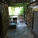 Grapevine terrace