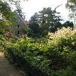 Foto de Karl Foerster Garten