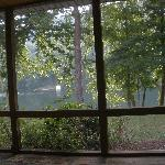 View from the screened-in porch