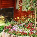 Lovely gardens!