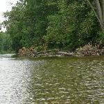 en bateau pour le lac ST PIERRE