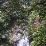 La Mina Falls in El Yunque