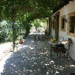 Foto di Villa Mimosa