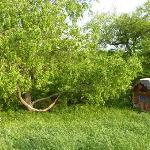 A relaxing hammock or nice swing from the tree brings back the simple life at Stony Creek Feathe