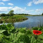 Hardwick Park Lake