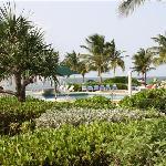 Veiw of resort off patio