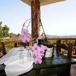 Photo of Turismo Rurale Is Bisus