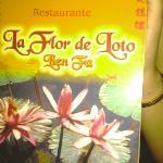 Photo of Flor de Loto