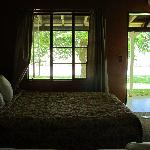 views of the river from the room