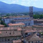 Turm des Palazzo Guinigi