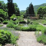 pond and borders