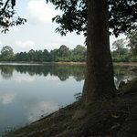 Wassergraben von Angkor Wat aus dem Wald gesehen
