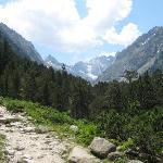 Photo de Mulcares in the Pyrenees