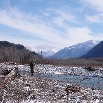 Vedder River Steelhead fishing