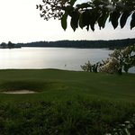 15 green along Allatoona Lake