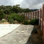 jardines secos y descuidados