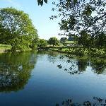 Mill Farm Pond