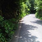 Part of road that will take you to Arnos Vale from the hotel.  This road is linked to the COURTS