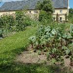 Vegetable garden at Zorza Poranna