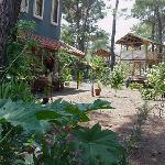 Garten und Wald Daphne House
