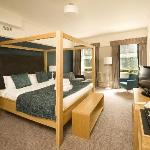 Room 216 - Premier Room