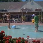Armand's fountain