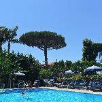 Hotel Alpha pool