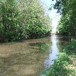 Nearby canal, Salwarpe