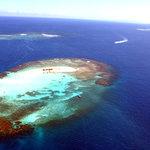 Paradise Island reef Dominican Republic