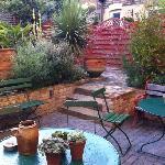 Jilly's garden