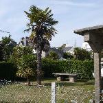 des palmier a bénodet et oui