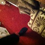 Der Teppich