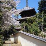 3 story pagoda at Saikoku-ji Temple