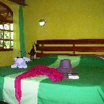 Photo of Hotel Palmeral Dorima