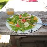 "salad made with produce from the ""honor system"" stand across the street"