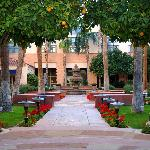 Courtyard Daytime
