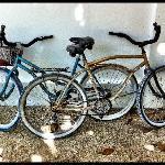 Our free bikes!