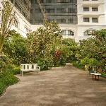 The Deli Garden