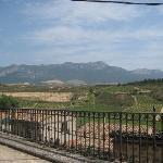 uitzicht op wijngaarden