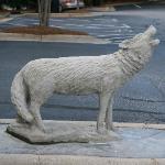 Wolfpack Pride