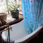 Gorgeous tub!