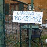 """""""Terasse"""" bzw. """"Garten für 3 Appartments direkt vor Eingang + Terassentür von Appartment 130 !"""