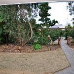 Neat garden