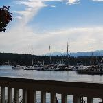 View of the marina from the restaurant