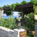 the taverna