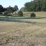 Golf 9 tours