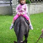 Pony reiten am Scharrerhof